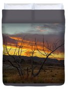 Sunset And Petrified Tree Duvet Cover