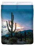 Sunset Beyond The Cacti Duvet Cover