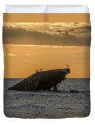 Sunset On The Wreck Of The Concrete Ship Atlantus Duvet Cover