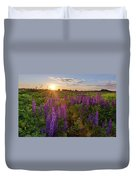 Sunset Over Meadow Of Lupine Duvet Cover