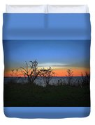 Sunset Through The Branches Duvet Cover