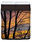 Sunset Through The Tree Silhouette Duvet Cover