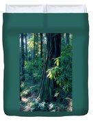 Sunshine In The Forest Duvet Cover
