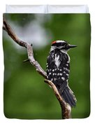 Sunshine Needed - Male Downy Woodpecker Duvet Cover