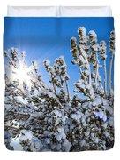 Sunshine Through Snow Covered Tree Duvet Cover