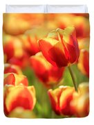 Sunsoaked Tulips #7 Duvet Cover