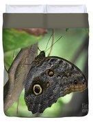 Superb Markings On An Owl Butterfly In A Garden Duvet Cover