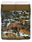 Surverying The Jasper Landscape Duvet Cover