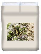 Swallowtail At Sand Wash Duvet Cover