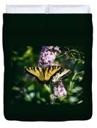 Swallowtail Butterfly At The Maryland Zoo Duvet Cover