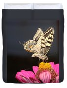 Swallowtail On Pink Flower  Duvet Cover