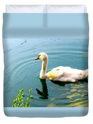 Swan Cygnet By Earl's Photography Duvet Cover