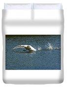 Swan Landing 2 Duvet Cover