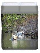 Swan Life Duvet Cover