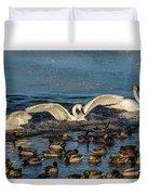 Swan Wings Reach Duvet Cover