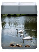 Swans And Ducks Duvet Cover