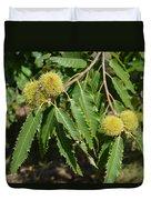 Sweet Chestnuts Duvet Cover