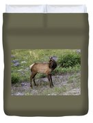 Sweet Elk Calf Duvet Cover