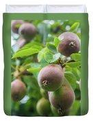 Sweet Fruit Duvet Cover