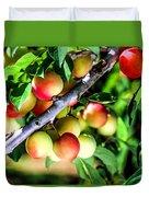Sweet Ripe  Plum On A Branch Duvet Cover