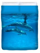 Swimming Dolphins Duvet Cover