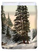 Switzerland: Davos, C1895 Duvet Cover