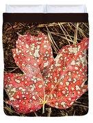 sycamore maple Autumn leaf Duvet Cover