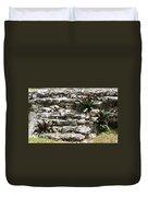 Talum Ruins Plant Life Duvet Cover
