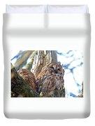 Tawny Owls Duvet Cover