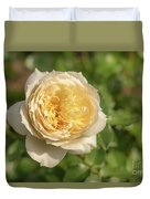 Tchaikovski Hybrid Tea Rose, White Rose Originally Produced By  Duvet Cover