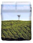 Tea Planation In Kerala - India Duvet Cover