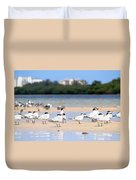 Terns At Fort Myers Duvet Cover