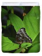 Terrific Eyespots On A Owl Butterfly On Leaves Duvet Cover