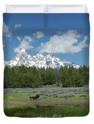 Teton Reflection With Buffalo Duvet Cover