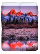Teton Reflections In The Frosted Willows Duvet Cover