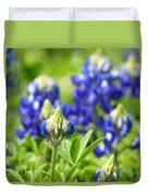 Texas Bluebonnets 003 Duvet Cover