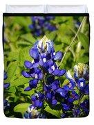 Texas Bluebonnets 005 Duvet Cover