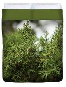 Texas Cedar Tree Duvet Cover