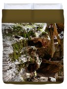 Textures On A Giant Sequoia Duvet Cover