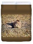 The Amazing Black-tailed Prairie Dog Duvet Cover