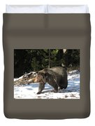 The American Grizzly Duvet Cover
