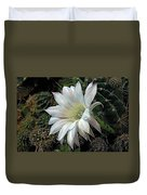 The Beauty Of Cactus Duvet Cover