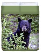 The Black Bear Stare Duvet Cover