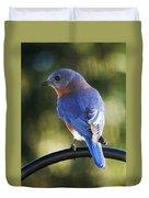 The Bluebird Duvet Cover