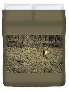 The Bull Elk Duvet Cover