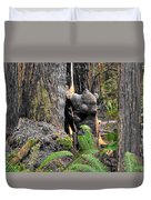 The Burly Bear Cub Close1 - Muir Woods National Monument - Marin County California Duvet Cover