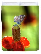 The Butterfly And The Coneflower Duvet Cover