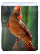 The Cardinal  Duvet Cover