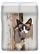 The Cat A Purrfect Carnivore Duvet Cover by Christine Till