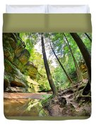 The Caves And Trail At Old Man's Cave Hocking Hills Ohio Duvet Cover